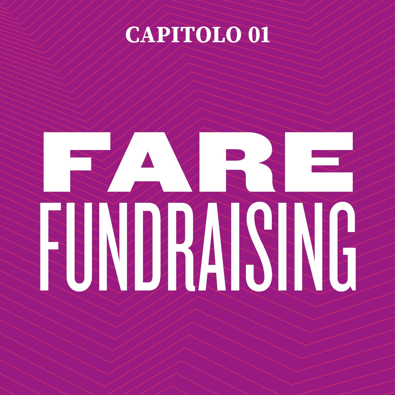 capitolo 1 fare fundraising